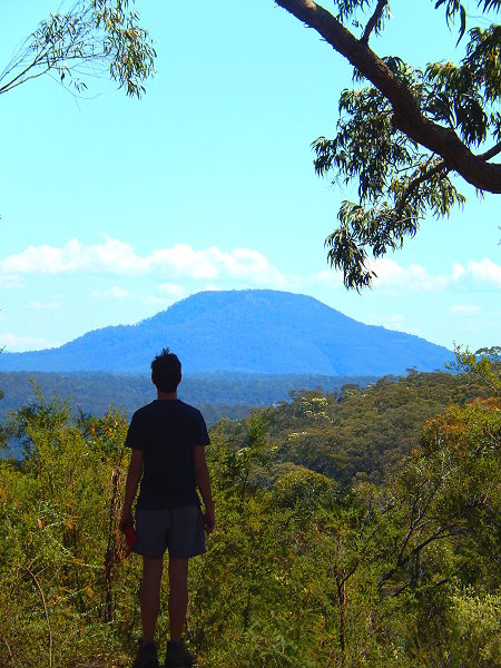 Mt Yengo photo